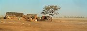 Panorama Landscape - Podor Senegal