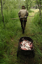 An indigenous family of Chukchu tribals collect salmon that they filet and dry at their summer fishing camp along the river Vyvenka in Khailino, Kamchatka July 15, 2007. Most indigenous people rely on the salmon harvested in the summer for the whole year. They dry it and feed it to themselves and their dogs that they use to get around on sleds in the harsh winter months. Because the area is so remote and no longer subsidized by the Russian or Soviet government of the past goods and gasoline are extremely expensive. The economy is struggling and the only way for most people to survive is through poaching and fishing in the short summer months. So now the fish population is rapidly declining as poachers collect the eggs and don't allow the salmon to spawn for the next generations. The family name is Akuguk and the elder man is Akuguk Roman Cholkovich (74), his wife Raisa Romanovna (79), their son Yuri Romanovich  (47) with mustach, Tnakovav Viktoria Mikhailovna (38) - niece, <br />  Tankai Valeri Panteleevich (44) - husband of the daughter with beard and<br /> great grandchildren, Akuguk Denis Renatovich  (9) and Akuguk Danil Renatovich  (6)