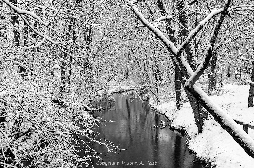 The brook was a little higher due to the snow fall.  Everything was still fresh and new.