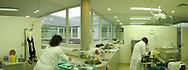 Deutschland, DEU, Berlin, 2003: Operationssaal in der Tierklinik; Blickwinkel 126 Grad. Das Berliner Tierheim ist das groesste und modernste auf der Welt. | Germany, DEU, Berlin, 2003: Operating room of the veterinarian department, angle of view 126 °. World's biggest and most modern animal shelter in Berlin. |