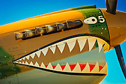 """Fully restored P-40 """"Warhawk"""" displaying the famous """"Flying Tigers"""" paint scheme.  Airventure 2008, Oshkosh, Wisconsin."""
