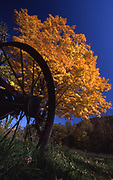 Antique farm wagon wheel, autumn foliage, rural Northcentral Pennsylvania