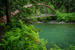 United States, Washington, Middle Fork Snoqualmie Trail, Mt. Baker-Snoqualmie National Forest