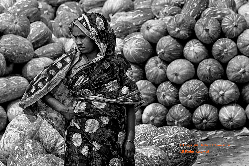 Close Scrutiny (B&W): A wonderfully dressed woman closely scrutinizes a new shipment of melons on the shores of the vegetable and fruit market in Dhaka Bangladesh.