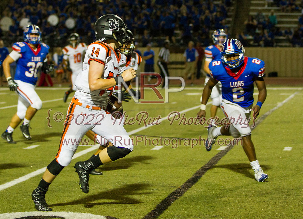 Cade Horton (#14) keeps the ball and runs past the Lions, defense for a Tigers touchdown in the 4th quarter.