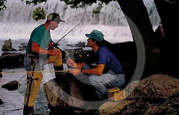 Outdoor recreation, Fishing Men Trout Fish in Yellow Breeches Creek, Cumberland Co. PA