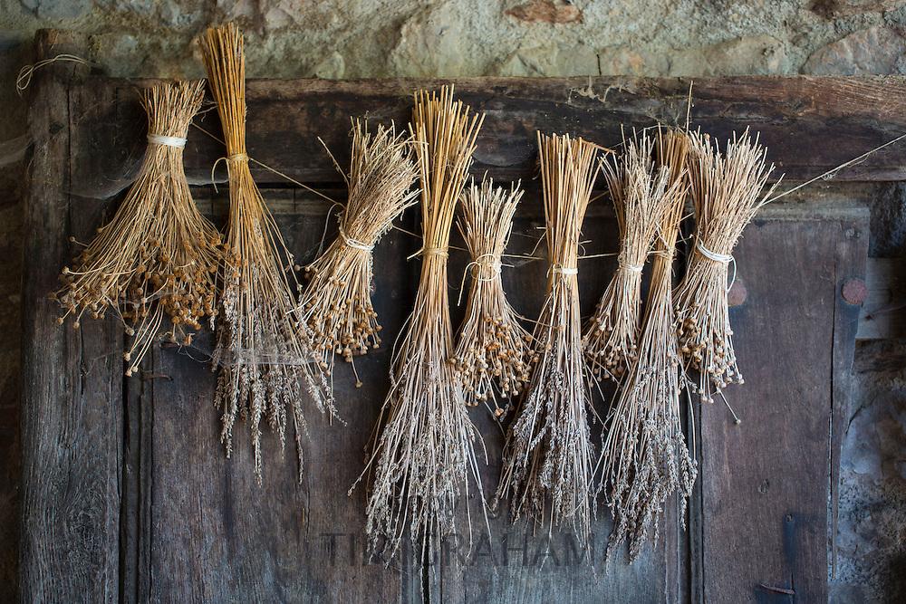 Traditional Basque doorway dried lavender, grasses old oak door in Biskaia Basque region, Spain