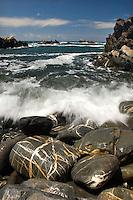 Sea landscape, Southwest Alentejo and Vicentine Coast Natural Park, Portugal