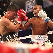 "Jonathan ""Bomba"" Gonzalez (R) and Julian ""El Nino Artillero"" Yedras exchange blows during a Telemundo boxing match for the WBO Latino Flyweight Title at Osceola Heritage Park on Friday, July 20, 2018 in Kissimmee, Florida.  (Alex Menendez via AP)"