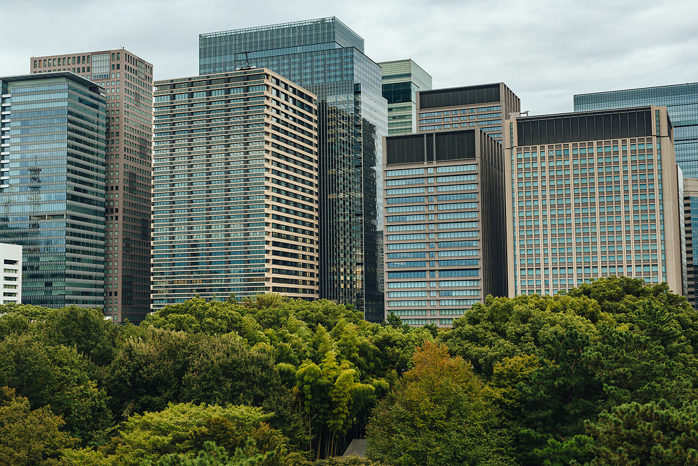 Skyscrapers and commercial buildings are seen from The East Gardens of the Imperial Palace, Tokyo, Japan