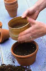 Sowing seed in a pot<br /> Using a sieve to cover seeds with fine compost