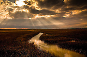 Sun breaks through a cloudy sky on the marsh near the Isle of Palms, SC.