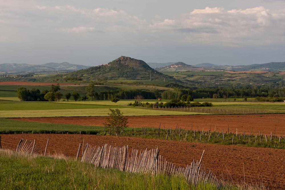 Agricultural landscape nearby St. Germain Lembron, Puy de Dôme, Auvergne, France