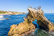 Arch Rock with Seagulls at Little Corona Beach