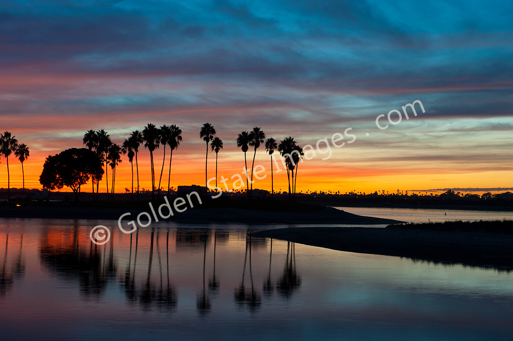 Palm trees at sunset in Mission Bay Park.