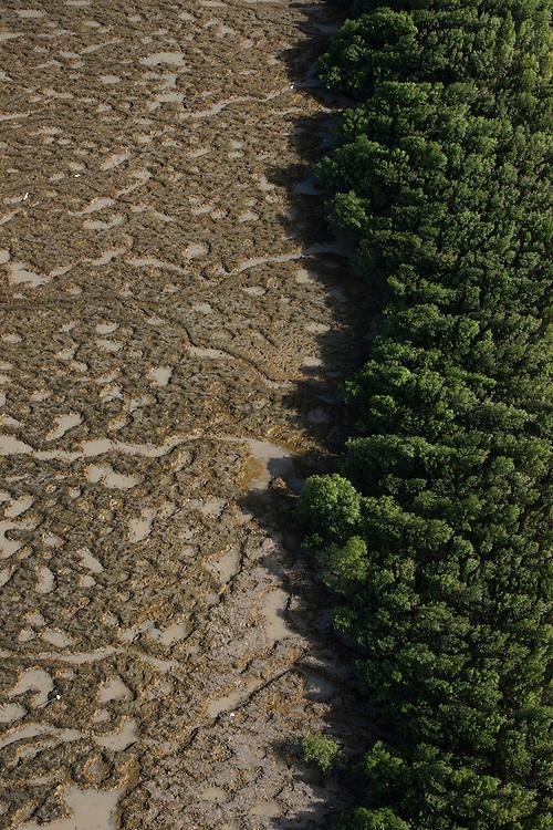Mud patterns on beach<br /> East Coast<br /> GUYANA<br /> South America