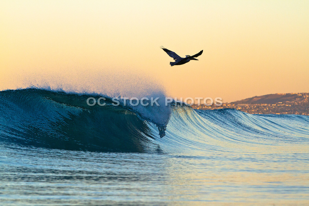 Sunrise Surf in San Clemente