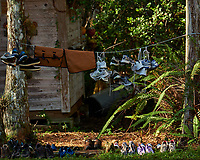 Tennis shoes and waders drying at Clyde Butcher's Retreat. Winter Nature in Florida Image taken with a Fuji X-T2 camera and 100-400 mm OIS telephoto zoom lens