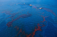 June 10, 2010 ,Skimmer boats collect BP oil on the surface of the Gulf of Mexico and then do a controlled burn.