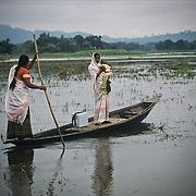 Polio in India (2004)