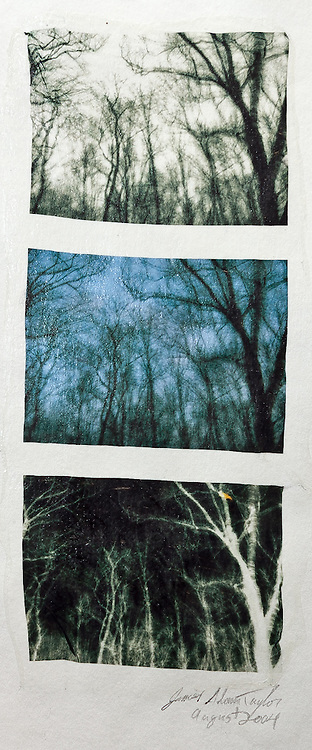 """Description:<br /> This is one of my first successful photo transfers.  I began developing this technique in 2004 in order to mimic the Polaroid transfer film process so that it could be used for digital prints. In a way similar to the Polaroid film, the image was lifted from the backing paper on a thin flexible film and then placed onto another surface, in this case watercolor paper. This movement of the image on a thin flexible film is what gives each of these prints unique waves ripples and uneven edge characteristics. <br /> <br /> The three images are part of one image transfer, until this point I had not made a transfer of a larger image, so I used a preprinted page rather than printing a new larger image.<br /> <br /> Medium: Acrylic Lift Transfer<br /> <br /> Size: image size is approximately 9.5"""" x 4.5"""" on larger paper to accommodate matting<br /> <br /> Edition size:<br /> N/A"""