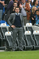 Football - 2013 / 2014 Championship  - Brighton & Hove Albion vs. Bolton Wanderers<br /> Bolton Wanderers Manager Dougie Freedman looks dejected at the final whistle as his side lose 3-1 after being a goal up against Brighton at The American Express Community Stadium <br /> <br /> Colorsport/Shaun Boggust