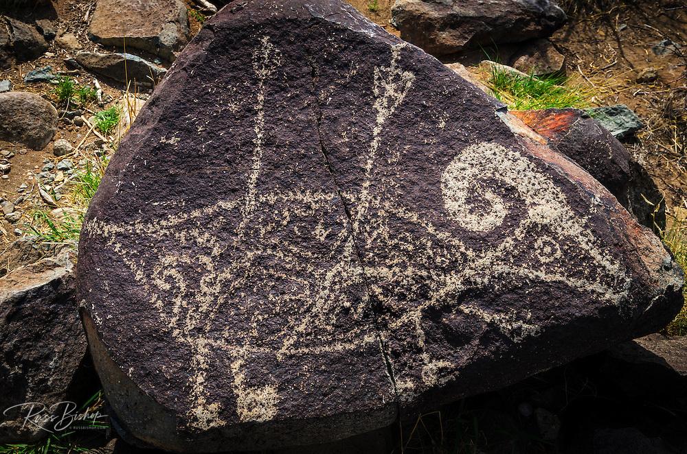 Petroglyphs at Three Rivers Petroglyph Site, Three Rivers, New Mexico USA