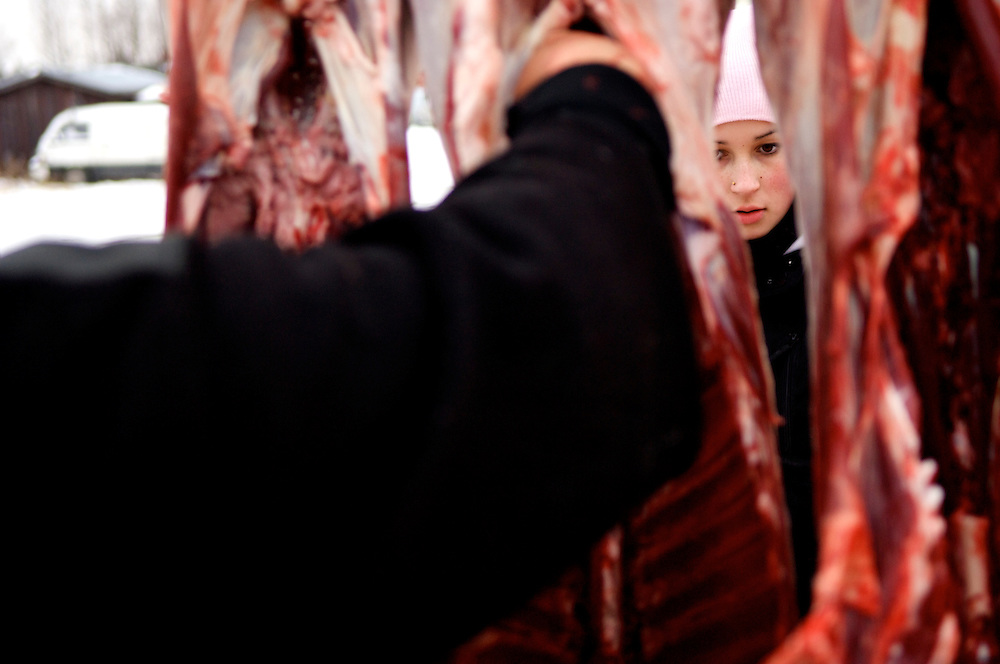 Annirauna Triumf, 16, gazes through freshly slaughtered reindeer. Though not a ?full-time? reindeer herder, she attends ?reindeer school? at Hirvas Salmi five times a year. ?I can maintain my Sami roots and live a modern life. That is how I can both adapt and stay the same,? she said.  Despite the inhospitable Arctic climate reindeer herding has been the livelihood of the Sami for more than a thousand years, but amid the economic, technological, and environmental problems of modern society their indigenous culture must increasingly reconcile these radical changes in order to preserve age-old traditions, customs, and mores.