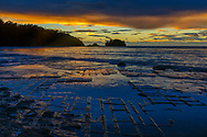 Australia; Tasmania; Eaglehawk Neck; Tessellated Pavement;