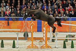 281 - Etje<br /> KWPN Hengstenkeuring - 's Hertogenbosch 2012<br /> © Hippo Foto - Leanjo de Koster