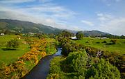 Wairaparapa, North Island, New Zealand