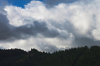 cumulus clouds cross a ridge in the Tahoma State Forest in the Cascade Mountain Range of Washington state, USA