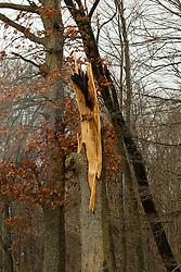 03 December 2018:   Storm damage near LeRoy Illinois from a Tornado strike on December 1, 2018.