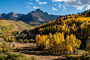 Along the drive to Blue Lakes Trailhead on Ouray County Road 7, see bright fall foliage colors beneath Mt Sneffels in Uncompahgre National Forest, San Juan Mountains, out of Ridgway, Colorado, USA.