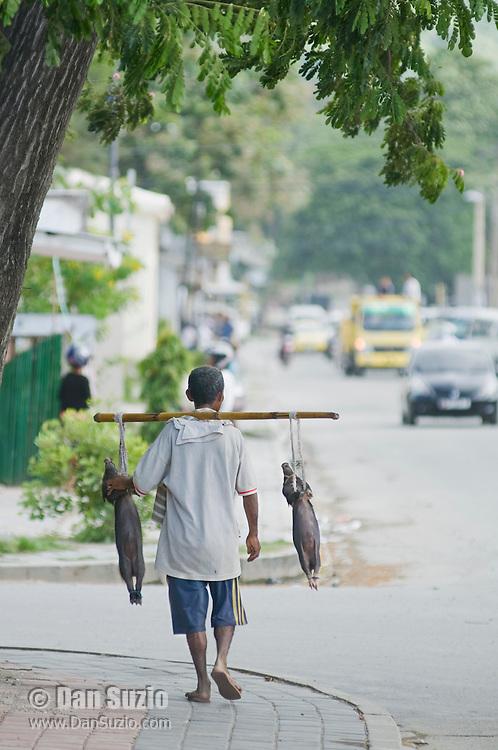 Street vendor offers live piglets for sale in Dili, Timor-Leste (East Timor)