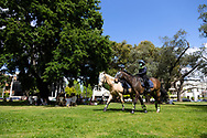 Police Horses are seen patrolling parks in South Yarra with families nearby enjoying picnics during COVID-19 in Melbourne, Australia. Premier Daniel Andrews comes down hard on Victorians breaching COVID 19 restrictions, threatening to close beaches if locals continue to flout the rules. This comes as Victoria sees single digit new cases. (Photo by Dave Hewison/Speed Media)