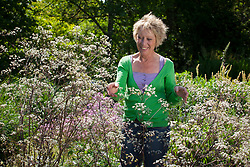 Carol Klein with Anthriscus sylvestris 'Ravenswing'