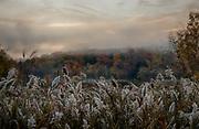 Wetlands in Northeastern Pennsylvania on a foggy Autumn morning, by  Darren Elias Photography