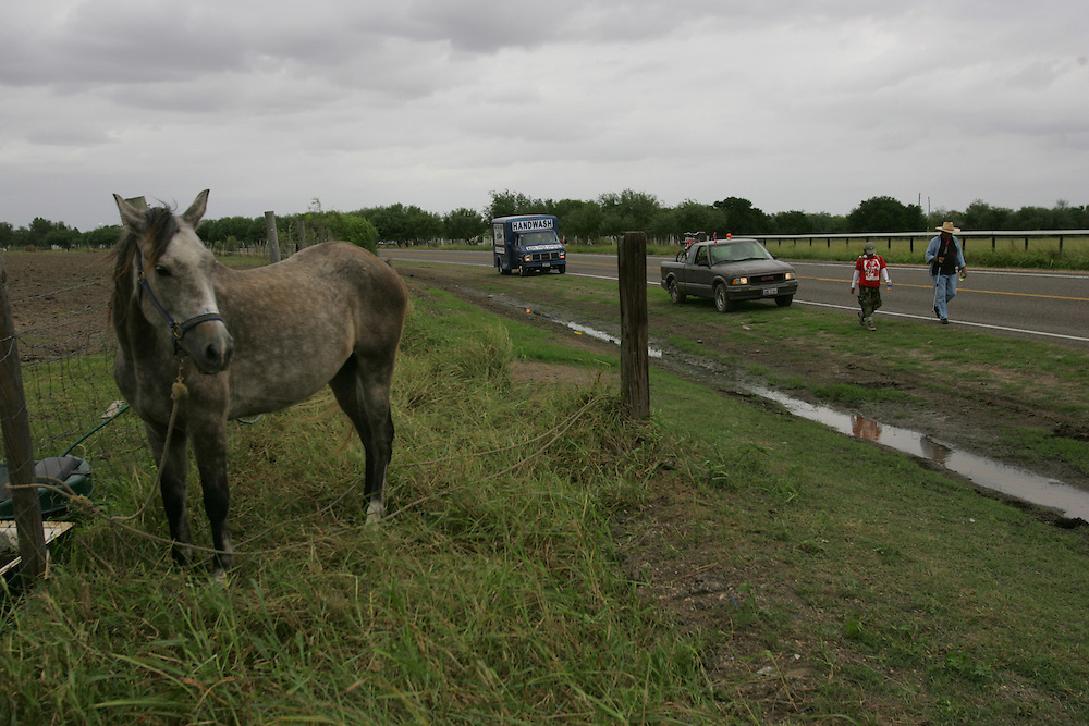 Jay Johnson Castro passes by a horse outside of San Benito on his walk from Laredo to Brownsville