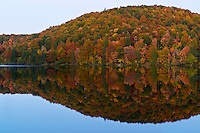 Forest reflection in the calm water of Proscansko lake in the evening, Upper Lakes, Plitvice National Park, Croatia