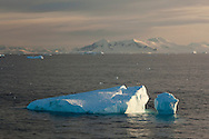 Iceberg in the foreground as the ship crosses the Antarctic Circle (near Adelaide Island) at dusk.