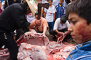 Men, their faces covered in blood, butcher a bull in Paracho, Michoacan state, Mexico on August 8, 2008 during the annual Feria Internacional de la Guitarra. The bull was slaughtered and used to stock the town's meat locker while butchers served beef stew to the public to conclude the parade held by the town's market vendors.