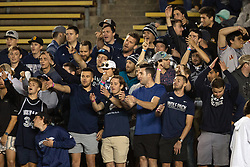 Nevada fans cheer on their team against California during the fourth quarter of an NCAA college football game, Saturday, Sept. 4, 2021, in Berkeley, Calif. (AP Photo/D. Ross Cameron)