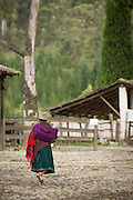 Local walking past Hacienda Zuleta, Ecuador, South America.