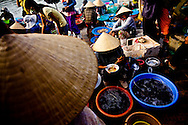 Market sellers get their breakfast at the early morning fish market in downtown Hoi An, Vietnam, Southeast Asia