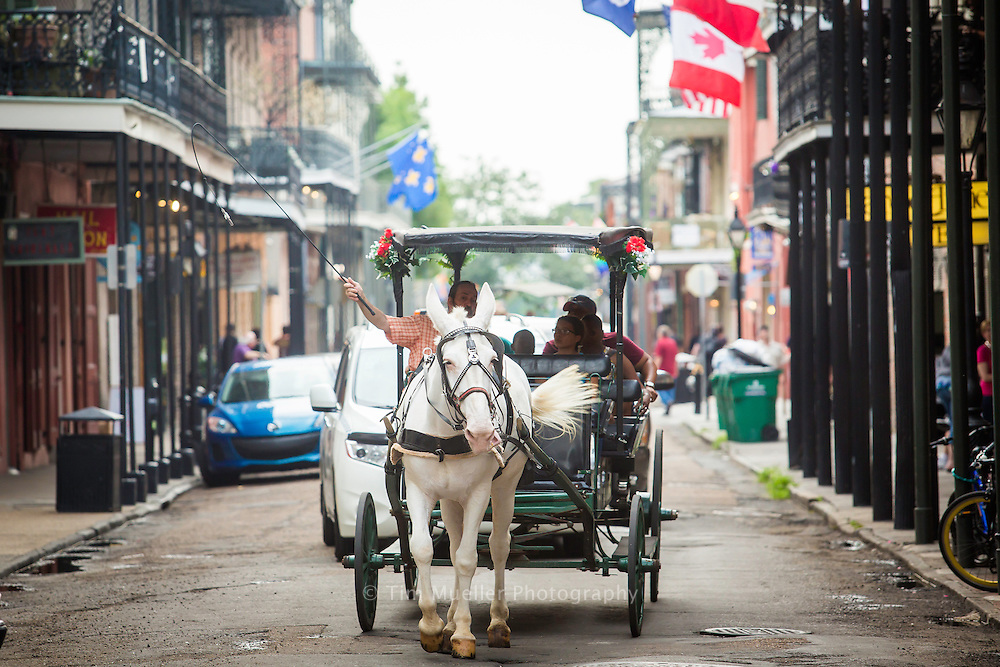 Tourist witness the French Quarter from horse and carriage as they ride along St. Ann Street near Jackson Square in New Orleans, La.