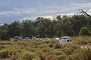 Kenya, Samburu National Park a line of tourists jeeps