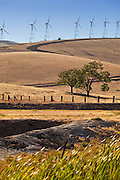 Wind Turbines of California
