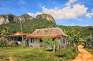 House and mogotes in Vinales, Pinar del Rio, Cuba.