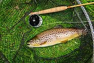 Fly Fishing UK Chalk streams